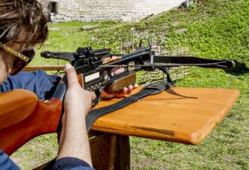 Tir sportif : quelle arme acheter